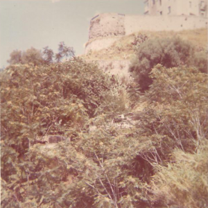 Cannone, 1972