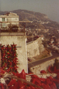 Cannone, 1980
