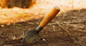 La passione per l'archeologia