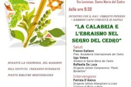 La Calabria e l'ebraismo nel segno del cedro