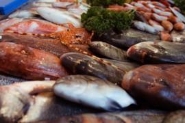 Mercato ittico: il Comune di Cetraro pubblica l'avviso per l'acquisizione di manifestazioni d'interesse
