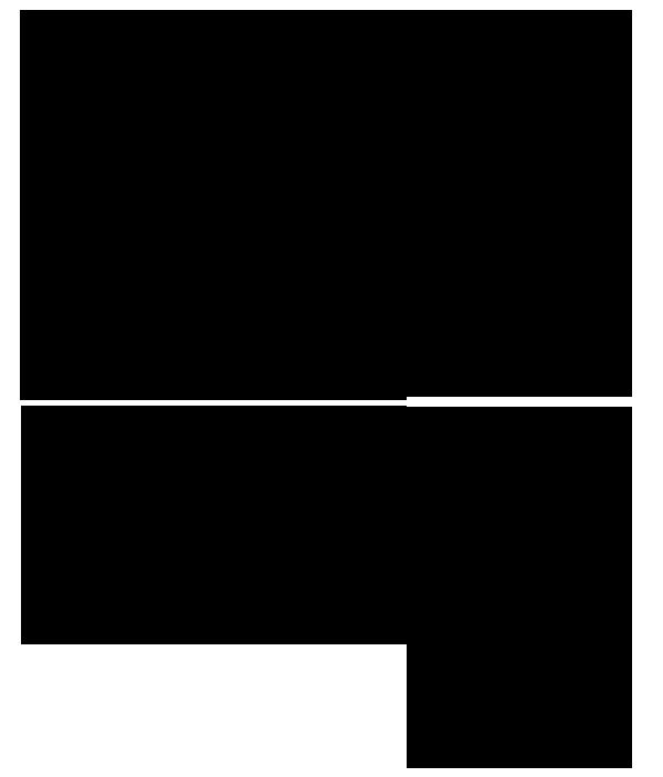 Scuole-Cetraro-2