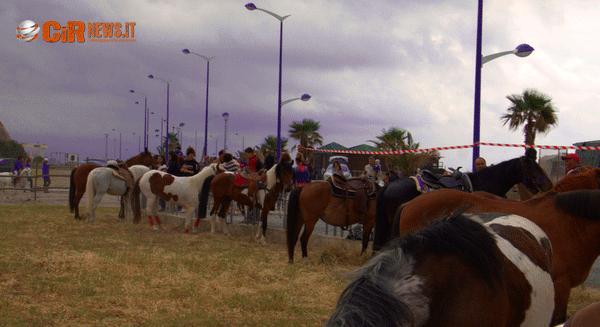 Equiraduno Cetraro (13)
