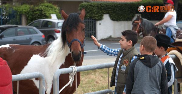 Equiraduno Cetraro (5)