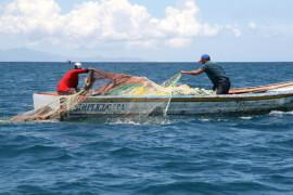 """Pesca, incontri di partenariato del Flag """"La Perla del Tirreno"""""""