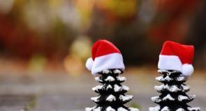 Le tradizioni di Natale in Calabria