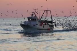 Cetraro, i pescatori incontrano il Sincado Aita