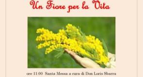 Cetraro, benedizione dell'Albero di Mimosa: domenica 18 marzo