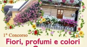 """Al via il primo concorso: """"Fiori, profumi e colori a Cetraro"""""""